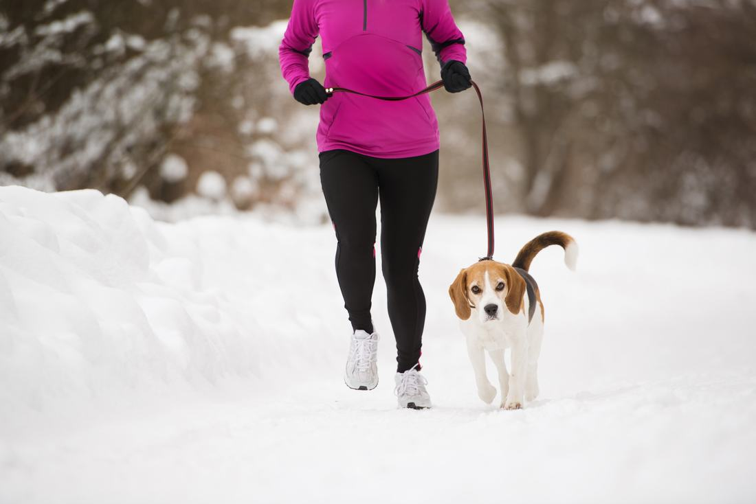 woman running with her dog in the snow